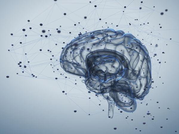 L'approche holistique d'Optimum Osteo vise à améliorer les fonctions cérébrales et les capacités mentales