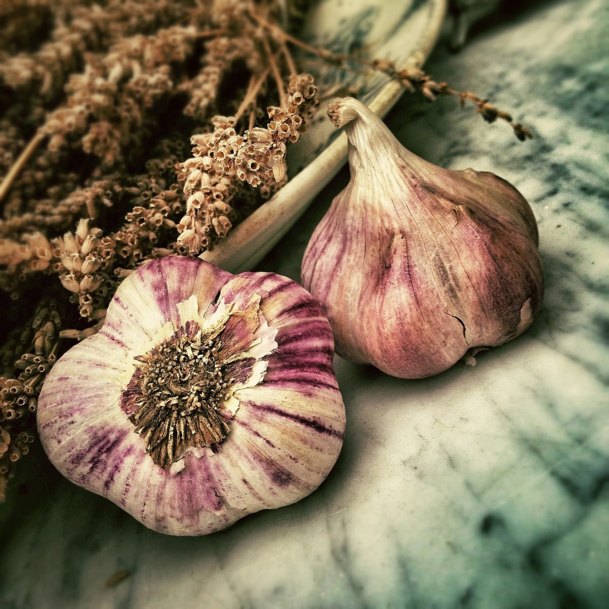 Garlic for boosting the immune system ail pour renforcer le système immunitaire